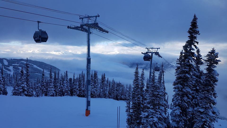 ski gondola over snow and trees
